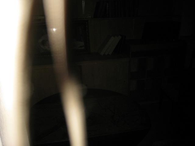 Orbs Explained - Paranormal Investigators of Milwaukee
